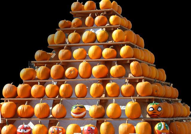 Thanksgiving, Halloween, Helloween, Pumpkin, Delicious