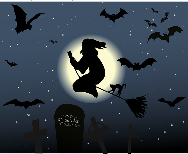 Halloween, The Witch, Hexenbesen, Cat, Moon, Star