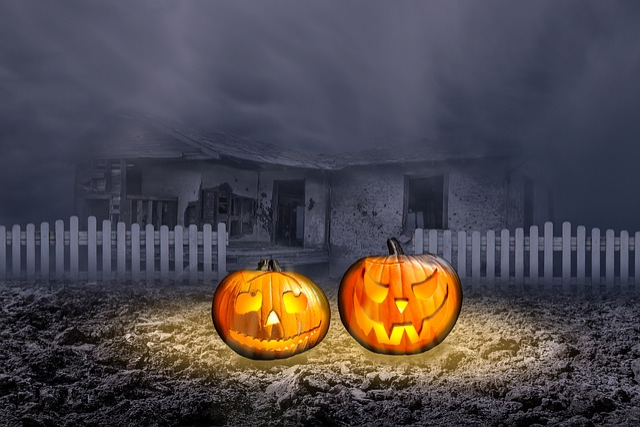 Halloweenkuerbis, Jack O Lantern, Halloween, Pumpkin