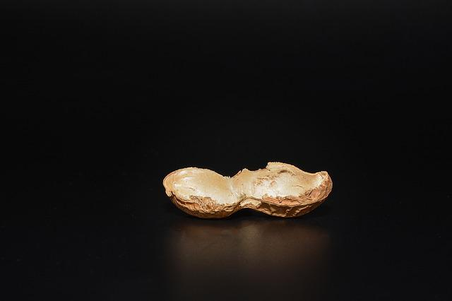 Peanut, Cut In Half, Empty, Halved Peanut Shell