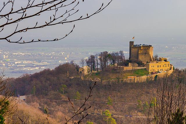 Castle, Hambach Castle, Palatinate, Fortress