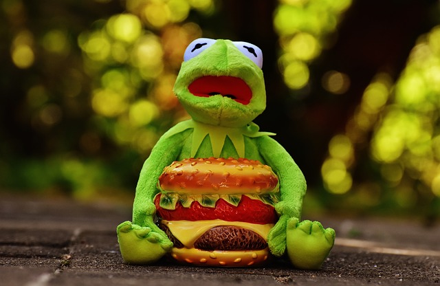Kermit, Frog, Cheeseburger, Hamburger, Funny, Animal
