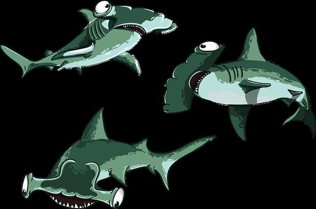 Shark, Fish, Hammer, Predator, Cartoon, Character