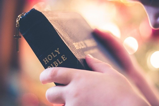Cross, Holy, Book, Bible, Reading, Religious, Hand
