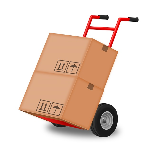 Hand Truck, Hand Trolley, Steekkar, Box, Move, Moving