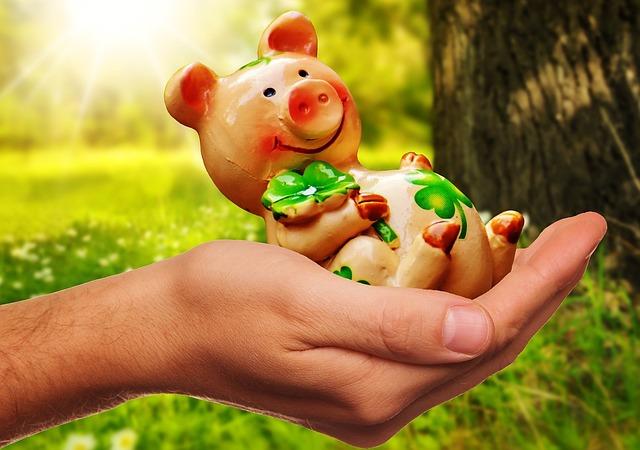 Good Luck, Handful Happiness, Piglet, Lucky Pig