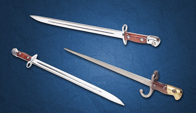Bayonet, Blade, Steel Arms, Handle, Garda, Sharp