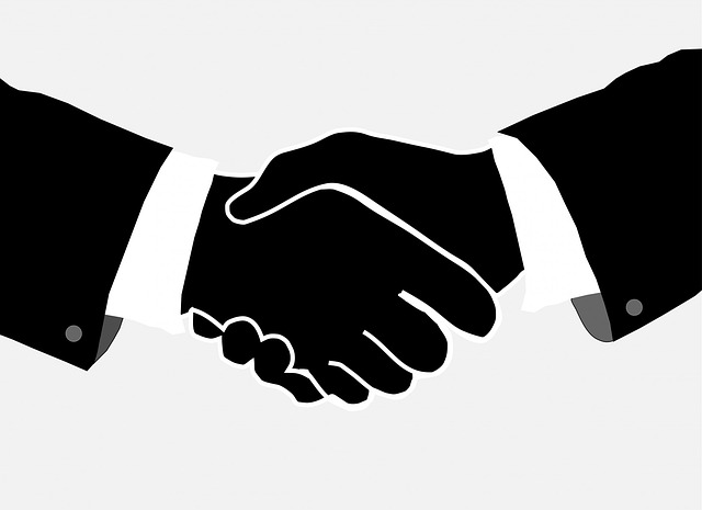 Handshake, Handshaking, Men, Man, Businessmen