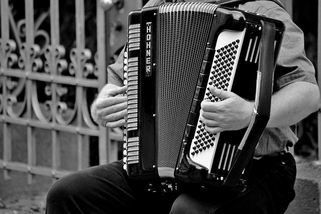 Accordion, Musical Instrument, Handzuginstrument