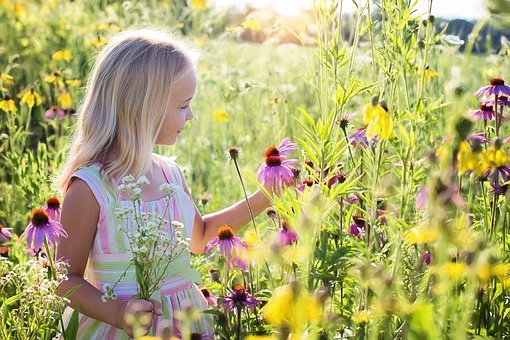 Little Girl, Wildflowers, Meadow, Child, Happiness