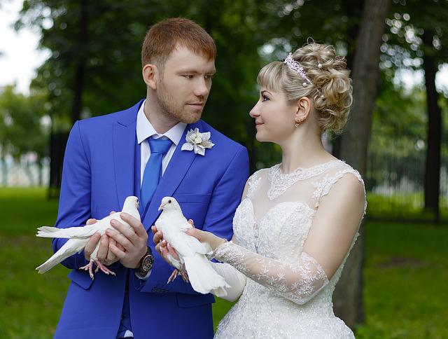 Wedding, Bride, Marriage, Married, White, Happiness