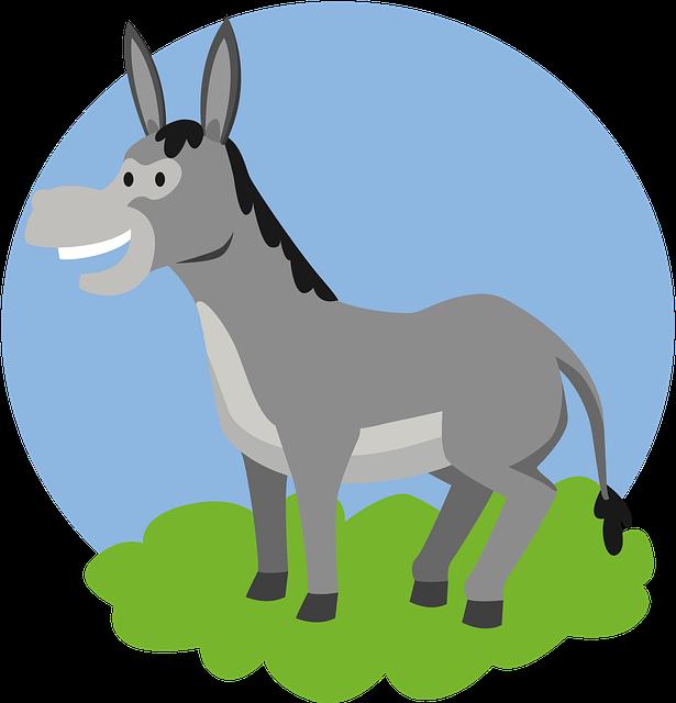 Donkey, Animal, Kids, Pet, Cute, Comic, Happy, Smile