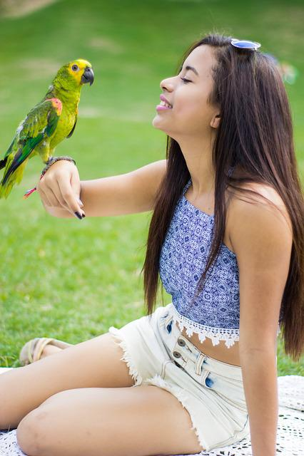 Girl, Parrot, Animal, Joke, Colorful, Kite, Happy