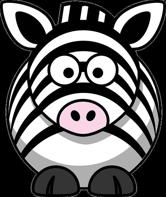 Zebra, Animal, Head, Eyes, Happy, Face, Wild, Funny