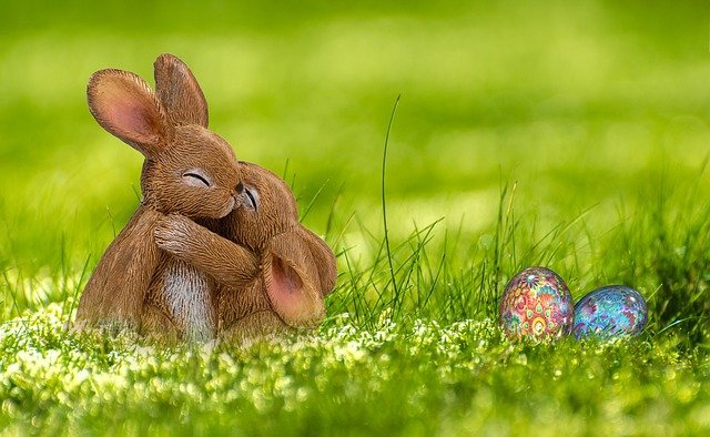 Easter, Easter Bunny, Egg, Hare, Spring, Greeting Card