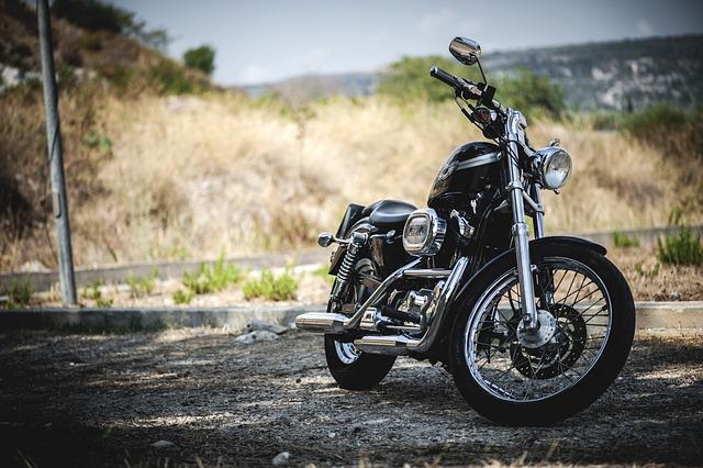 Biker, Harley, Harley Davidson, 1200, Custom