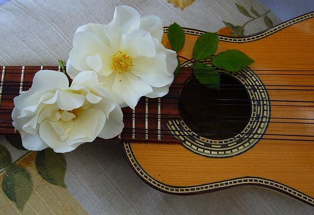 Charango, Andean, Stringed Instrument, Music, Harmony