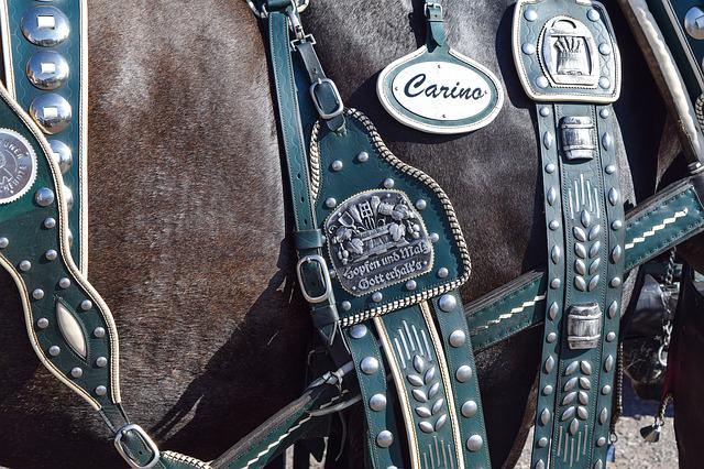 Harness For Horses, Close Up, Historically, Section