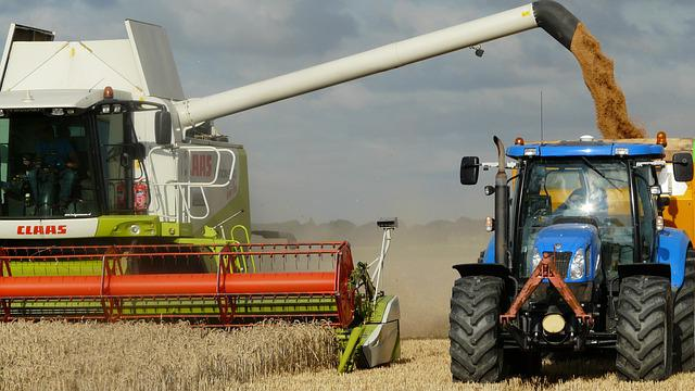 Harvest, Grain, Combine, Arable Farming, Harvest Time