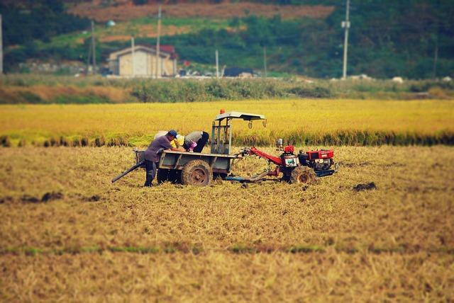 Harvest, Autumn, Ch, Farming, Tiller, Agriculture