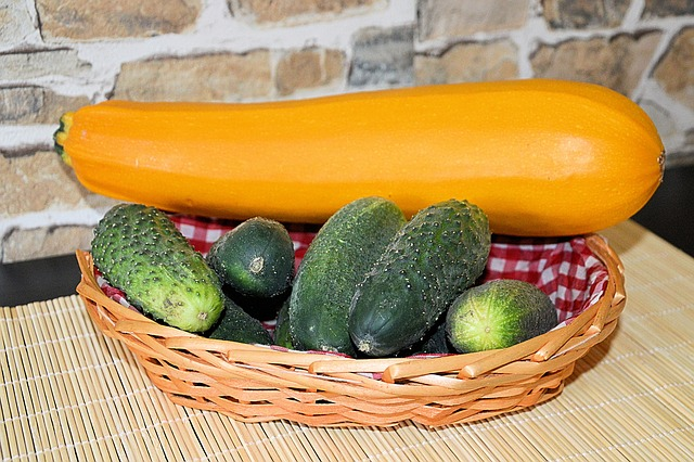 Zucchini, Cucumbers, Einleggurken, Vegetables, Harvest