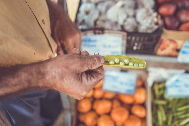 Fresh, Grocery, Grocery Store, Harvest, Macro, Market