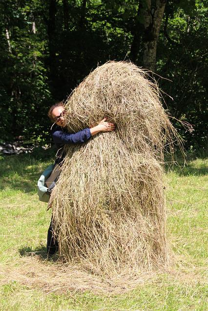 Haystack, Hide, Hay, Pile, Harvest