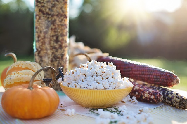 Popcorn, Autumn, Fall, Corn, Maize, Harvest, Pumpkin
