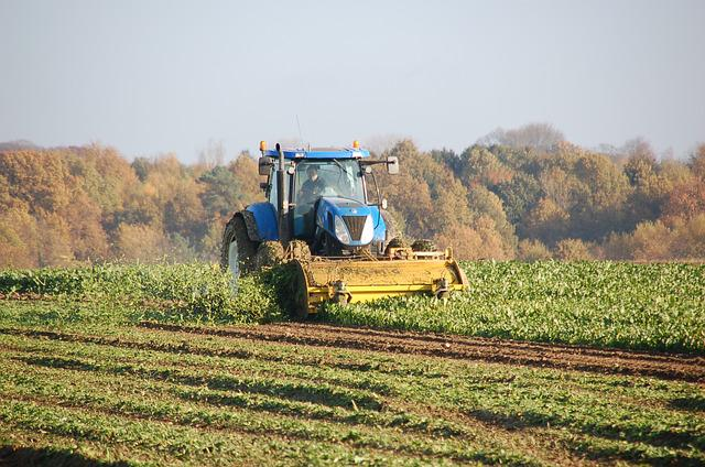 Tractor, Field, Harvest, Agriculture, Rural