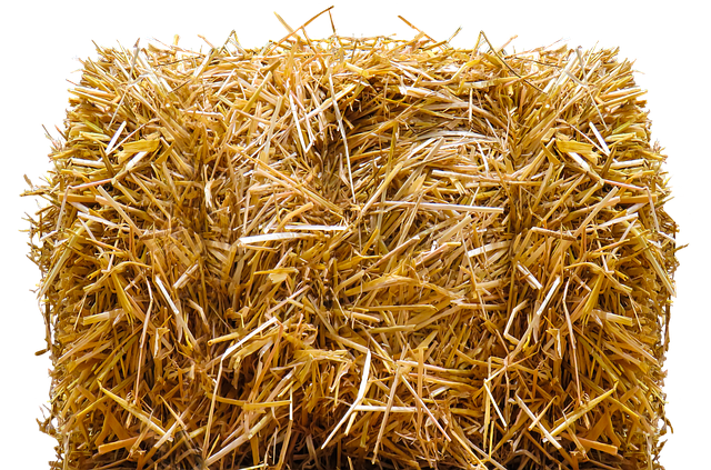 Straw, Straw Bales, Isolated, Agriculture, Harvest