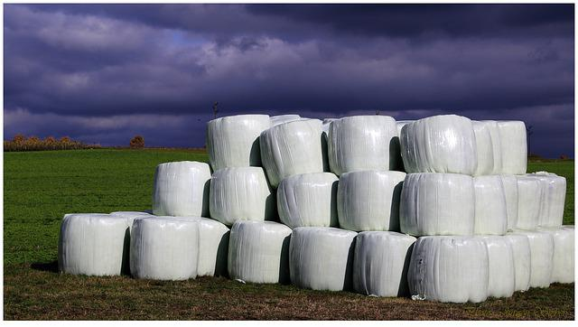 Sky, Round Bales, Straw Bales, Agriculture, Harvested