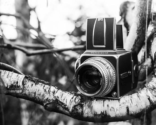 Hasselblad, Camera, Analog, Film, Photo, Lens, Medium