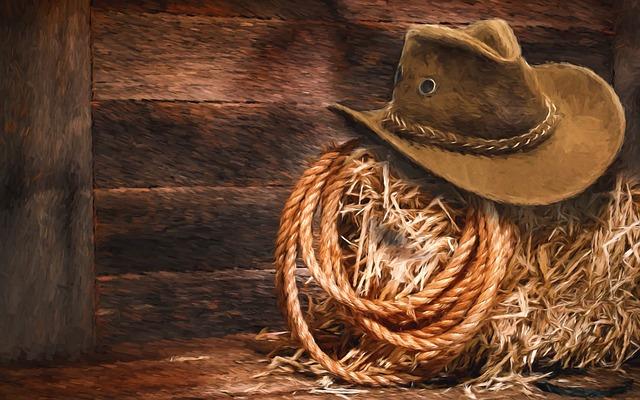 Lasso, Hat, Hay, Barn, Western, Cowboy