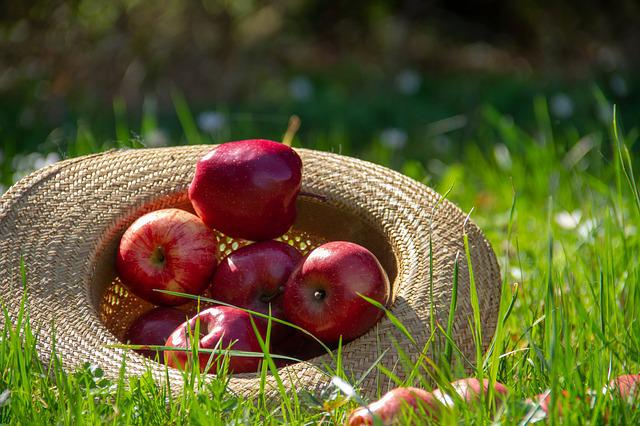 Apple, Fruit, Food, Nature, Hat, Straw Hat, Spring