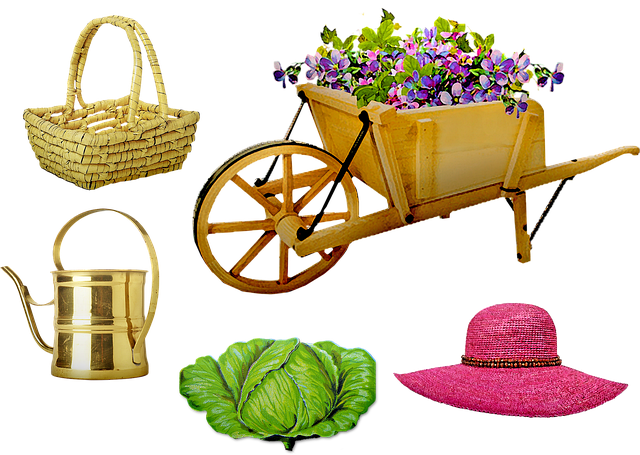 Garden, Wheelbarrow, Hat, Basket, Cabbage, Flowers