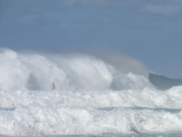 Hawaii, Surf, Sea, Pacific, Ocean, Surfer, Surfboard