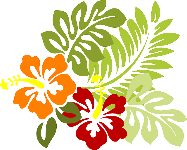Flower, Tropical, Leaves, Hibiscus, Hawaii, Red, Orange