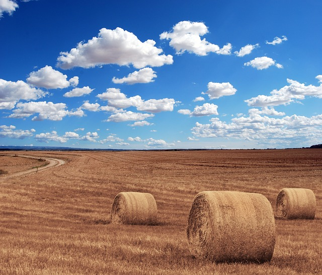 Hay Bales, Round, Farm, Sky, Clouds, Field, Harvest