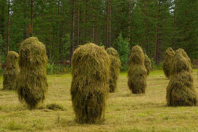 Haystacks, Breeding, Farm