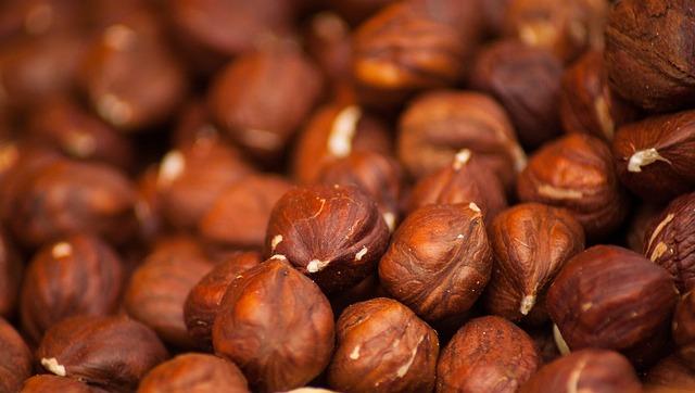 Hazelnuts, Hazel, Nuts, Dried, Protein, Food, Snack