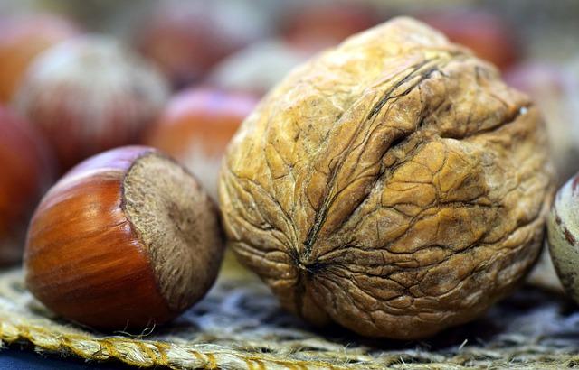 Walnut, Hazelnut, Shell, Nutshell, Healthy, Eat, Food