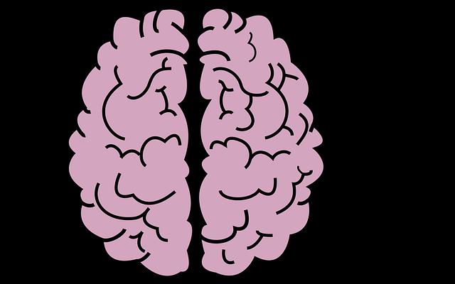 Brain, Organ, Head, Mind, Gray Matter, Creativeness