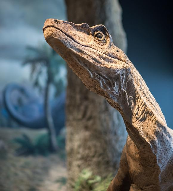 Dinosaur, Close, Portrait, Head, Reptile, Urtier