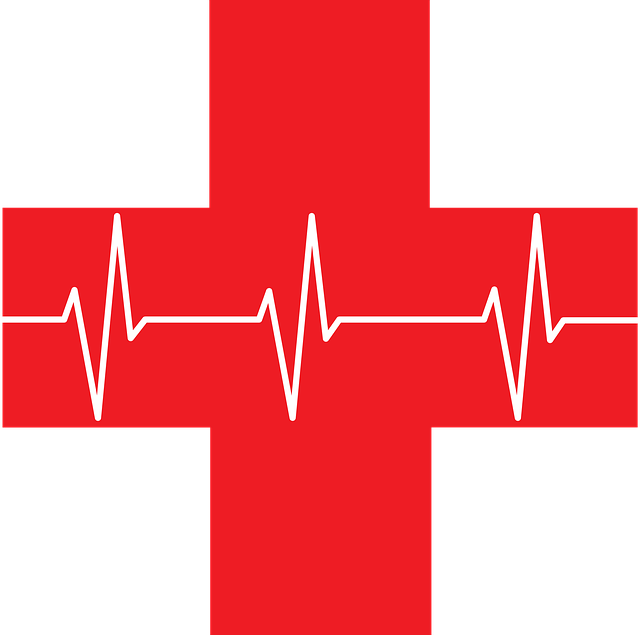 Ekg, Red Cross, First Aid, Health, Heart Rhythm, Icon