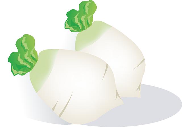Radish, Vegetables, Food, Eat, Plant, Healthy