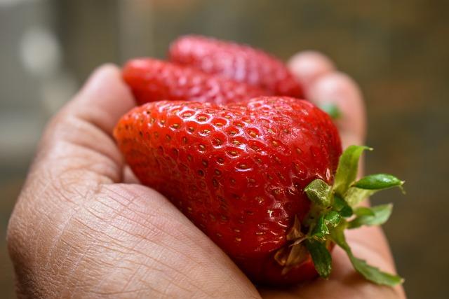 Food, Fruit, Healthy, Fragaria