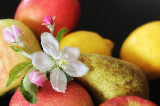 Apple, Fruit, Apple Blossom, Food, Healthy, Fresh