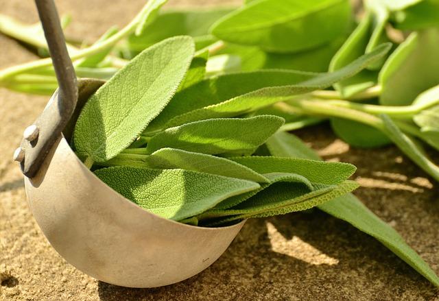 Sage, Herbs, Culinary Herbs, Healthy, Tea Herbs