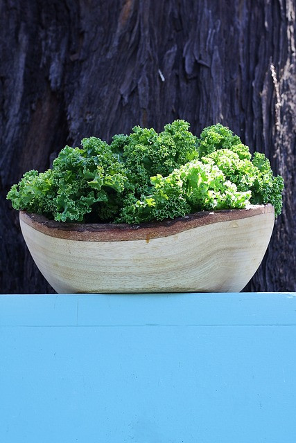 Kale, Vegetable, Bowl, Green, Nature, Healthy, Colorful