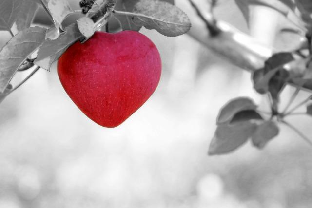 Apple, Love, Heart